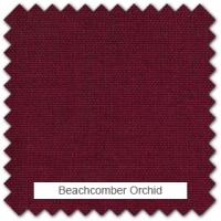 Beachcomber - Orchid